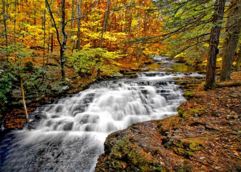 Autumn20in20Color20Bushkill20Falls20Pa__0.139172913_std